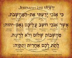Jeremiah 29:11 Hebrew Poster (V.1)