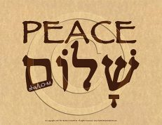 Shalom Peace Hebrew Poster (ECO)