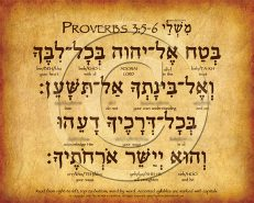 Proverbs 3:5-6 Hebrew Poster (V.1)