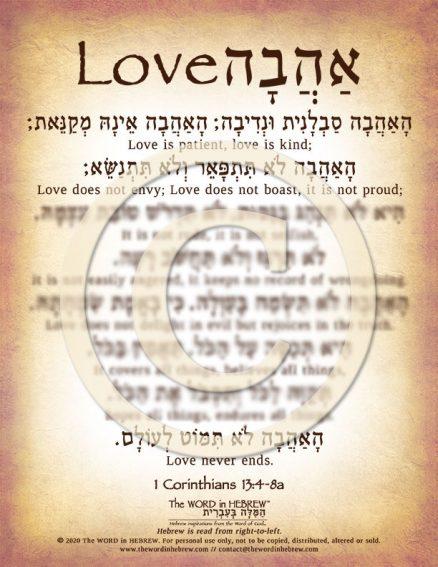 1 Corinthians 13:4-8 in Hebrew PDF Download (web)