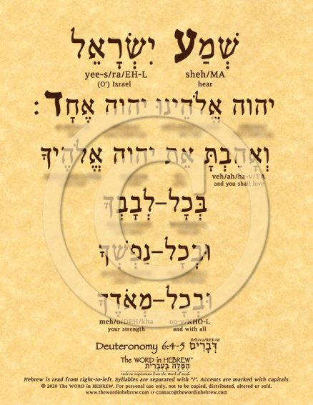 The Shema in Hebrew ECO (web)