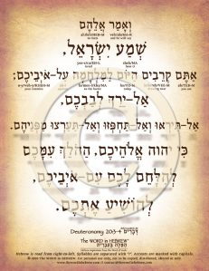 Deuteronomy 20:3-4 in Hebrew PDF Download (web)